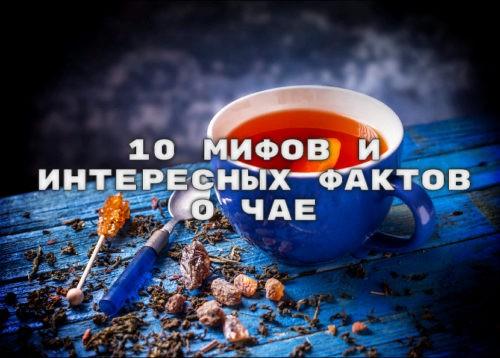10 мифов и интересных фактов о чае