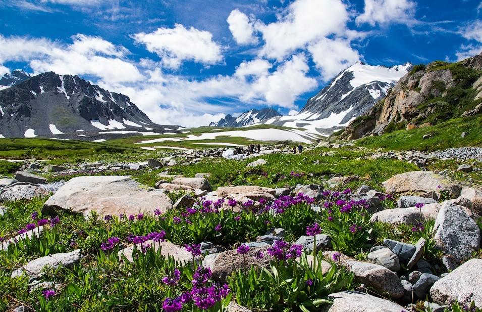 30 завораживающих мест горного Алтая