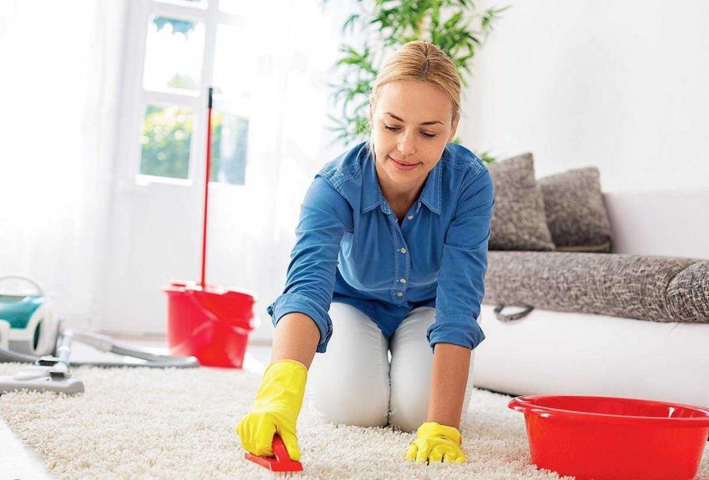 Как почистить палас в домашних условиях, используя порошок