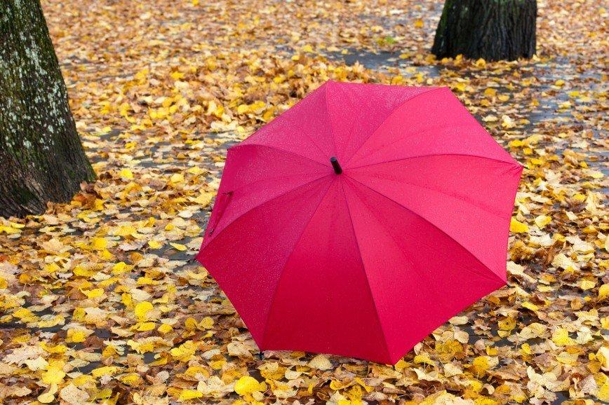 Как постирать зонт в домашних условиях