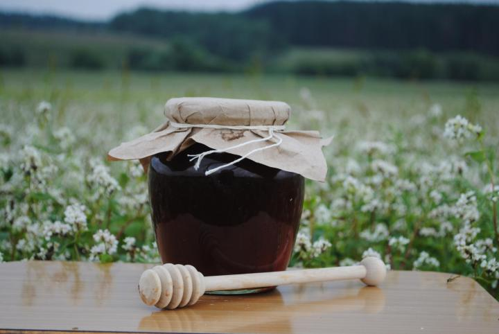 Гречишный мед — полезные свойства и противопоказания