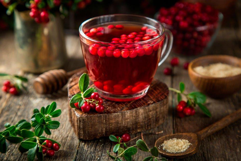 Брусничный чай — полезные свойства и противопоказания