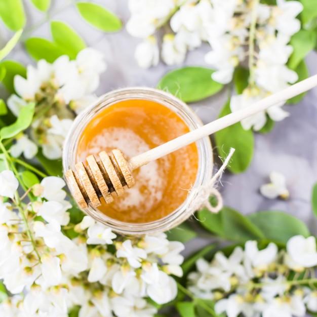 Мед акации — полезные свойства и противопоказания