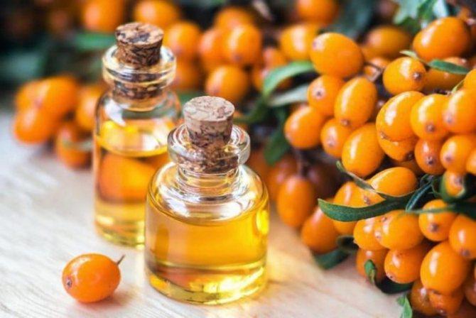 Облепиховое масло его полезные свойства и противопоказания