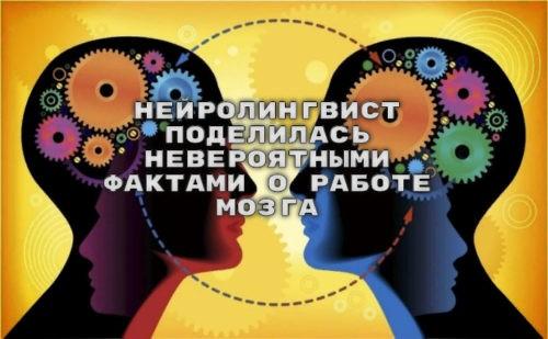 Нейролингвист поделилась невероятными фактами о работе мозга
