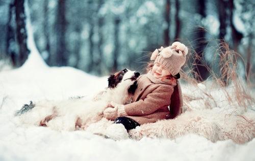 Радоваться зиме вместе с домашним любимцем