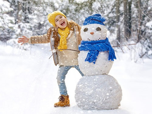Слепить снеговика и поиграть в снежки