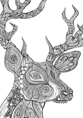 Раскраски антистресс сложные животные - Veronica