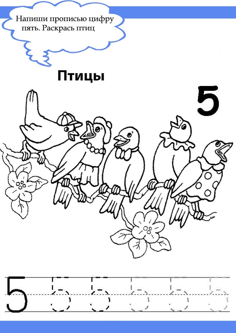 Учимся писать цифры в месте с животными