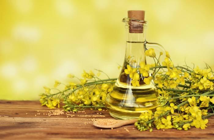 Рыжиковое масло — полезные свойства и противопоказания