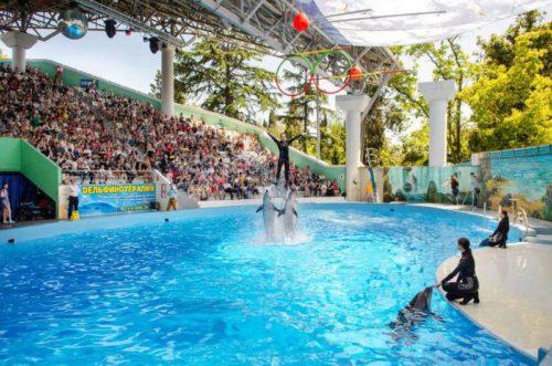 Дельфинарий в парке Ривьера