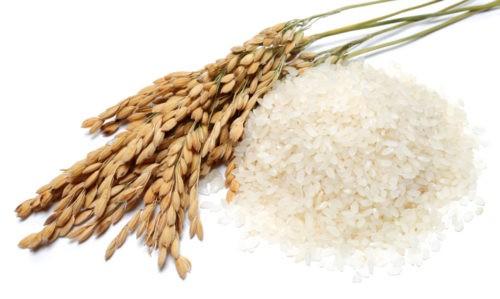 Как правильно варить краснодарский рис