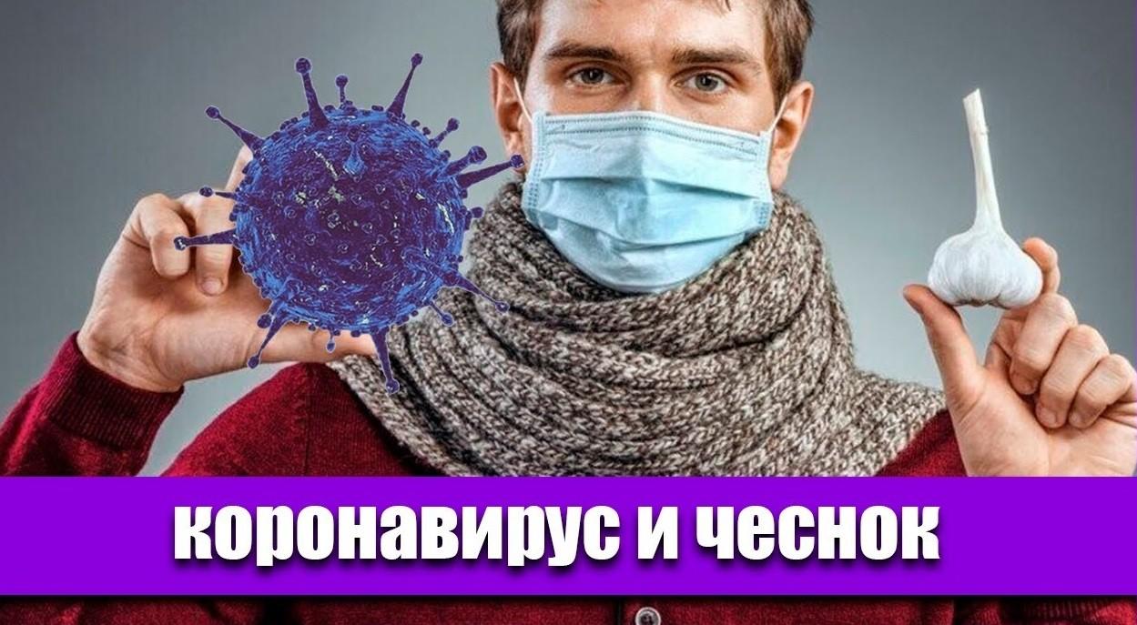 Чеснок против коронавируса правда или ложь