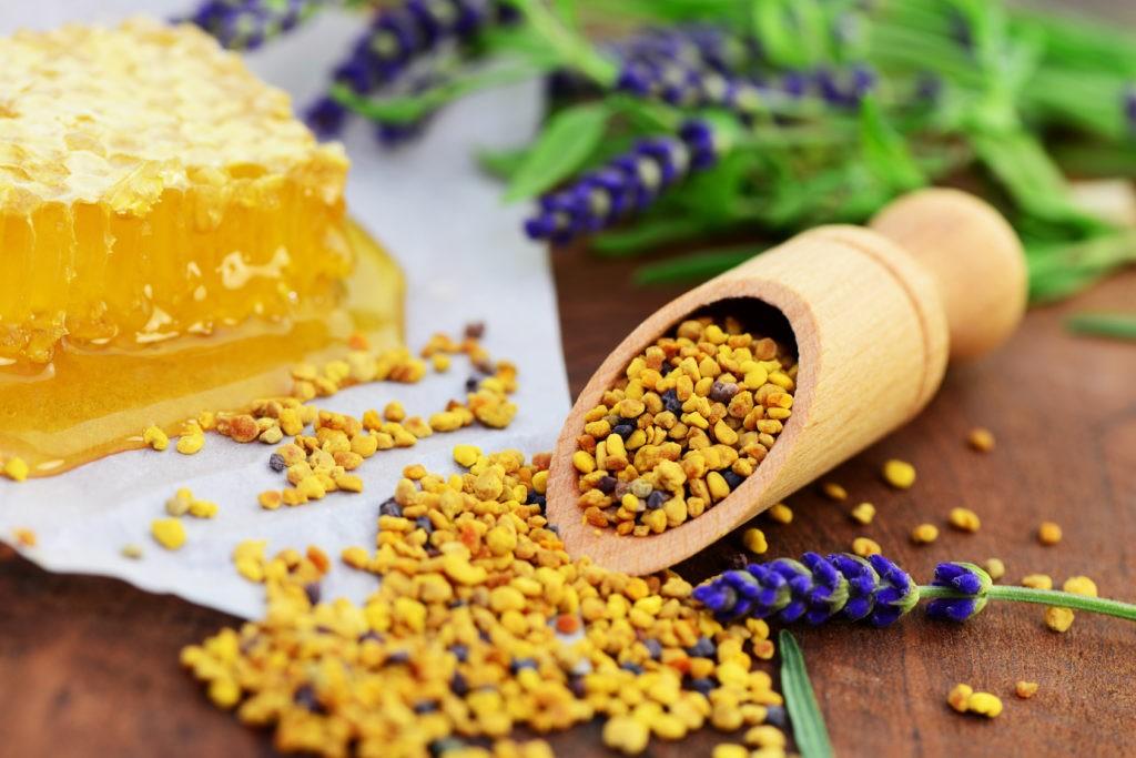 Пчелиная пыльца — полезные свойства и противопоказания