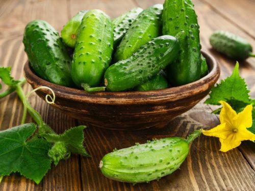 Огурцы — полезные свойства и противопоказания