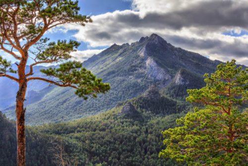 гора синюха алтайский край