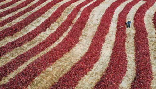 Земля Боху окрашена в красный цвет